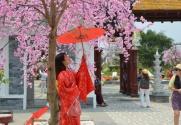 Các trường Đại học đào tạo ngành Tiếng Nhật ở TpHCM và Hà Nội